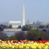 Washington-DC_Monuments